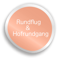 kraemersbug-button3.png
